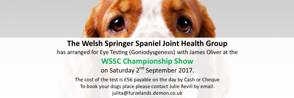 http://www.welshspringerspaniel.club/wp-content/uploads/2017/07/WSS-JHG-Banner-1136x380.png